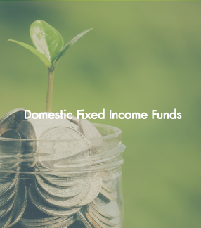 Domestic Fixed Income Funds